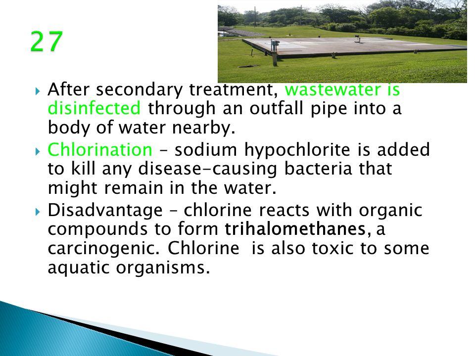  After secondary treatment, wastewater is disinfected through an outfall pipe into a body of water nearby.  Chlorination – sodium hypochlorite is ad