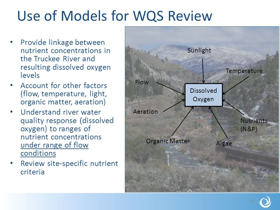 Use of Models for WQS Review Provide linkage between nutrient concentrations in the Truckee River and resulting dissolved oxygen levels Account for other factors (flow, temperature, light, organic matter, aeration) Understand river water quality response (dissolved oxygen) to ranges of nutrient concentrations under range of flow conditions Review site-specific nutrient criteria 14 Dissolved Oxygen Sunlight Flow Algae Aeration Nutrients (N&P) Temperature Organic Matter