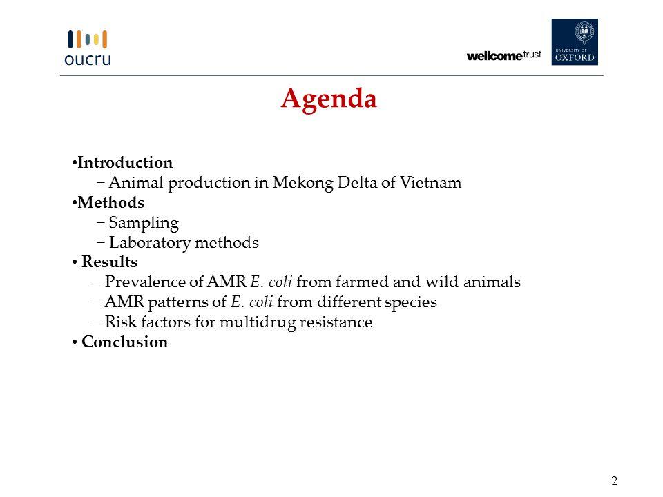 Agenda Introduction − Animal production in Mekong Delta of Vietnam Methods − Sampling − Laboratory methods Results − Prevalence of AMR E.