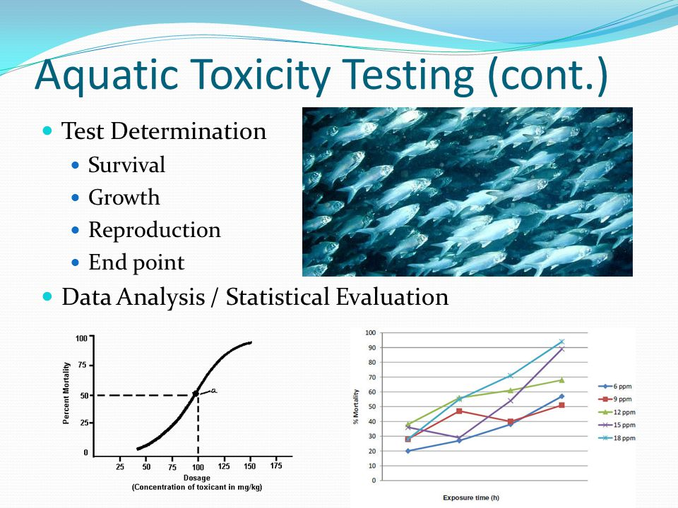 Aquatic Toxicity Testing (cont.) Test Determination Survival Growth Reproduction End point Data Analysis / Statistical Evaluation