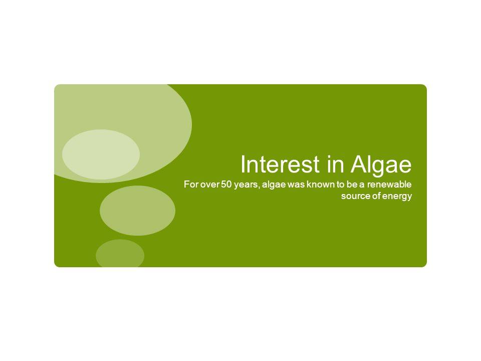 Interest in Algae For over 50 years, algae was known to be a renewable source of energy