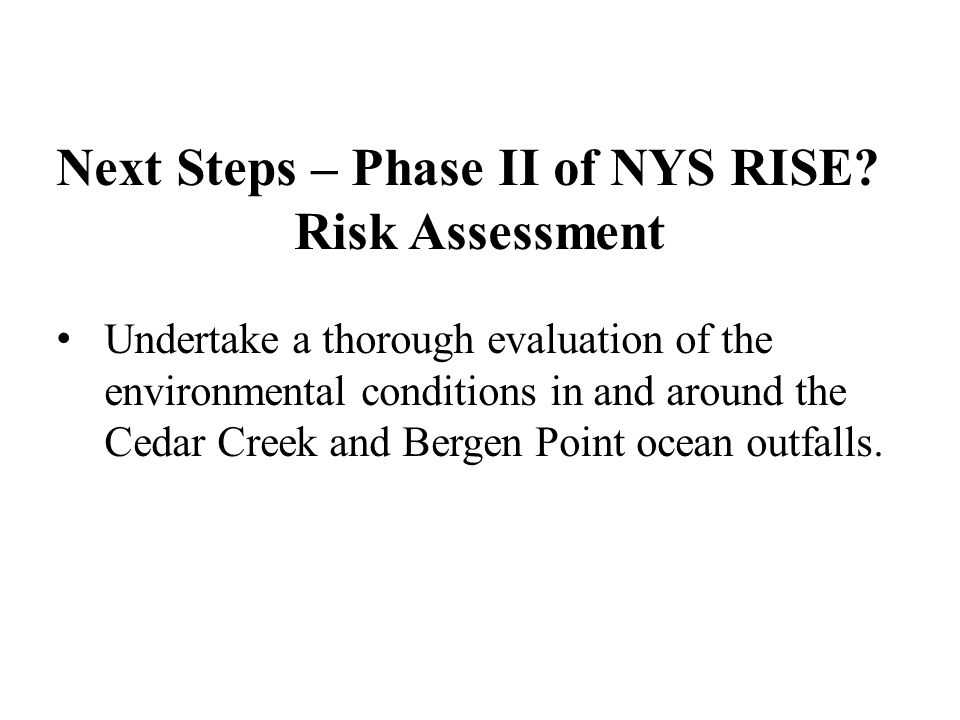 Next Steps – Phase II of NYS RISE.