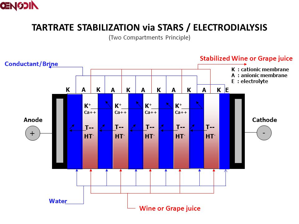 TARTRATE STABILIZATION via STARS / ELECTRODIALYSIS (Two Compartments Principle) + - A AAAAE KK KKKK K : cationic membrane A : anionic membrane E : ele