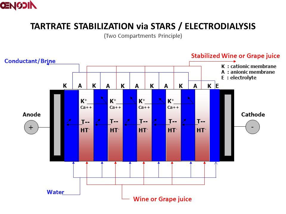TARTRATE STABILIZATION via STARS / ELECTRODIALYSIS (Two Compartments Principle) + - A AAAAE KK KKKK K : cationic membrane A : anionic membrane E : electrolyte Cathode Anode Water K + Ca++ K + Ca++ K + Ca++ K + Ca++ Conductant/Brine HT - T-- Wine or Grape juice Stabilized Wine or Grape juice