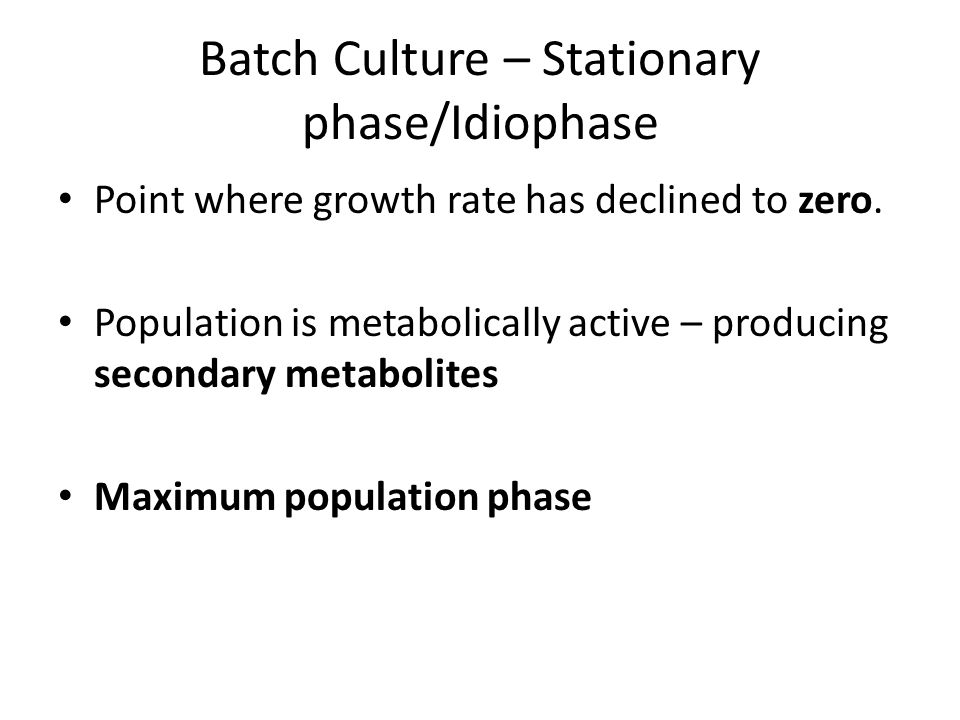 Batch Culture – Stationary phase/Idiophase Point where growth rate has declined to zero. Population is metabolically active – producing secondary meta