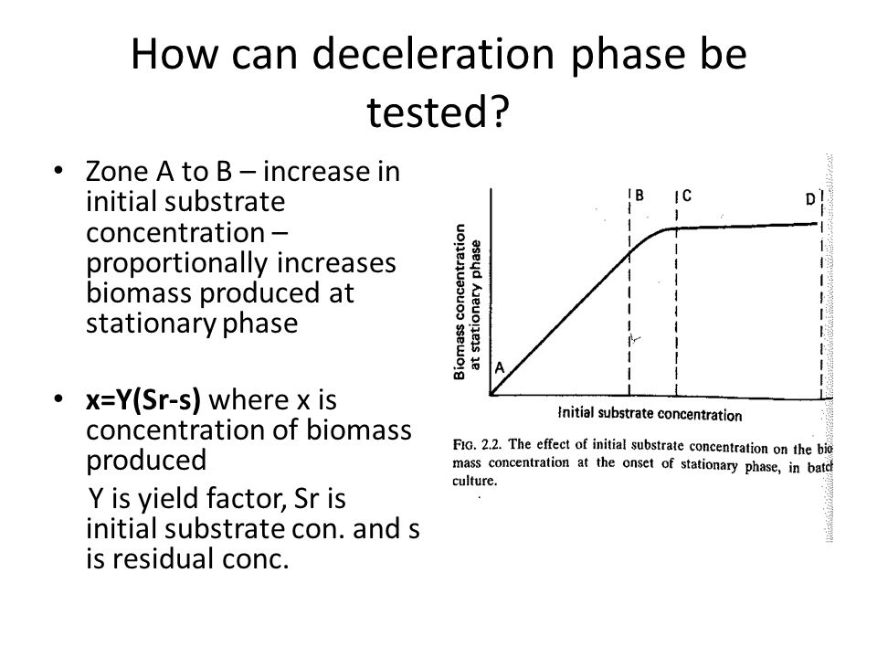 How can deceleration phase be tested? Zone A to B – increase in initial substrate concentration – proportionally increases biomass produced at station