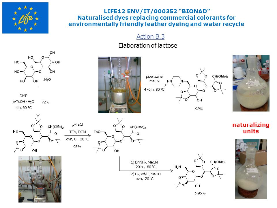 Elaboration of lactose Action B.3 LIFE12 ENV/IT/000352 BIONAD Naturalised dyes replacing commercial colorants for environmentally friendly leather dyeing and water recycle 72% 1) BnNH 2, MeCN 20 h, 80 C p-TsOH · H 2 O 4 h, 60 o C DMP naturalizing units TEA, DCM ovn, 0 – 20 C p-TsCl 93% >95% piperazine MeCN 4 -6 h, 80 o C 92% 2) H 2, Pd/C, MeOH ovn, 20 C