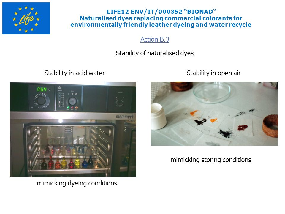 LIFE12 ENV/IT/000352 BIONAD Naturalised dyes replacing commercial colorants for environmentally friendly leather dyeing and water recycle Stability of naturalised dyes Action B.3 Stability in open airStability in acid water mimicking dyeing conditions mimicking storing conditions