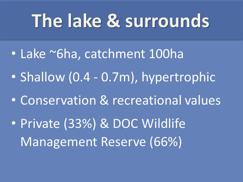Lake ~6ha, catchment 100ha Shallow (0.4 - 0.7m), hypertrophic Conservation & recreational values Private (33%) & DOC Wildlife Management Reserve (66%) The lake & surrounds