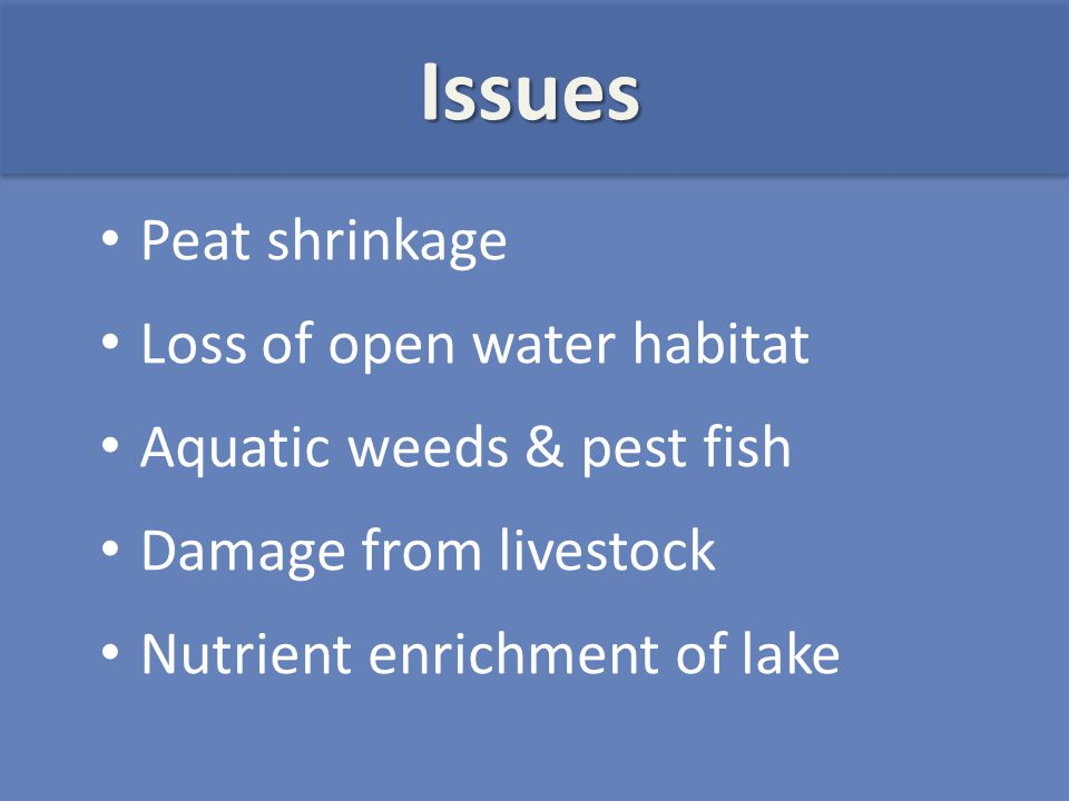 Peat shrinkage Loss of open water habitat Aquatic weeds & pest fish Damage from livestock Nutrient enrichment of lake Issues