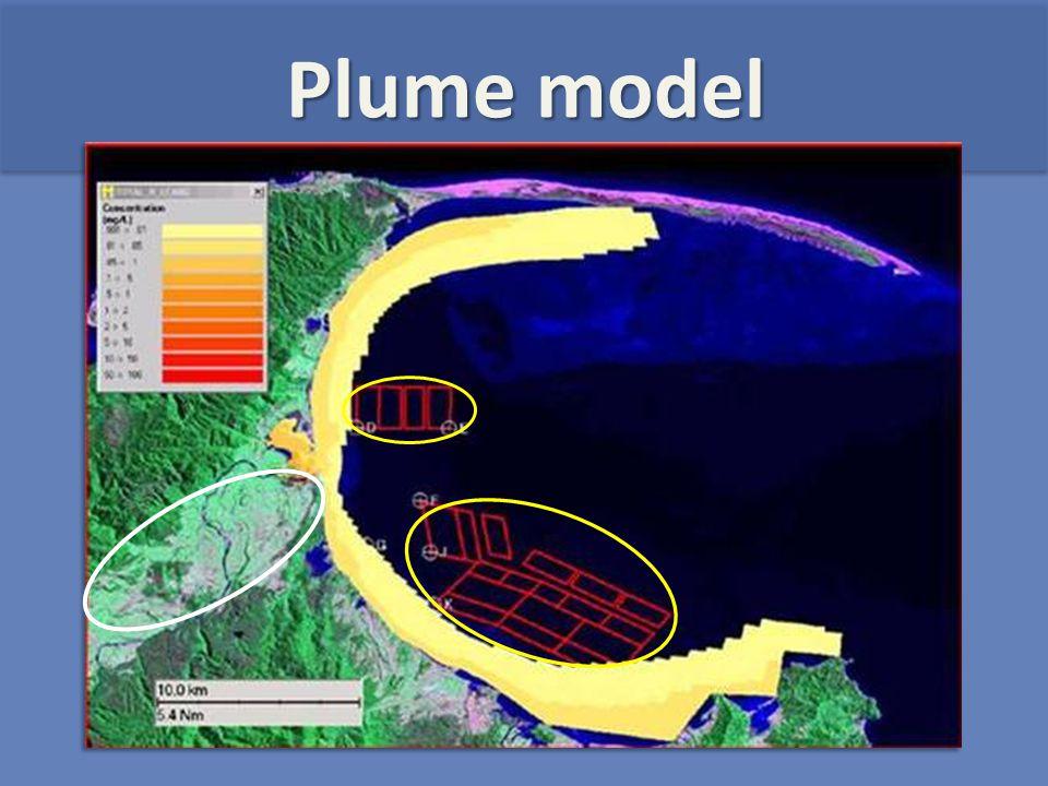 Plume model