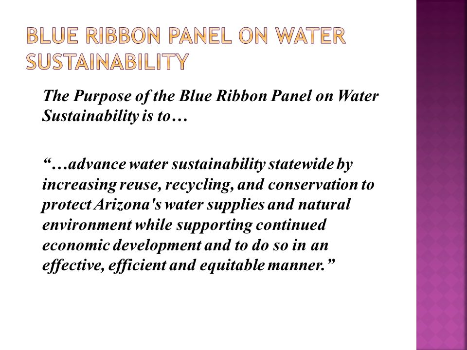 "The Purpose of the Blue Ribbon Panel on Water Sustainability is to… ""…advance water sustainability statewide by increasing reuse, recycling, and conse"