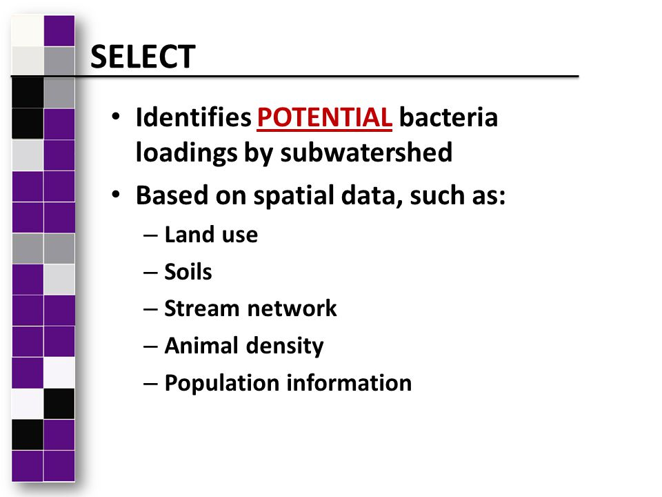 Identifies POTENTIAL bacteria loadings by subwatershed Based on spatial data, such as: – Land use – Soils – Stream network – Animal density – Populati