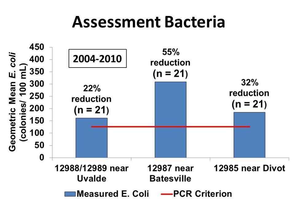 Assessment Bacteria