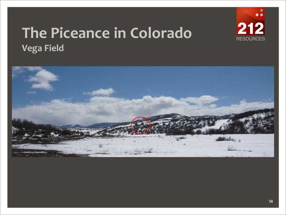 The Piceance in Colorado Vega Field 14