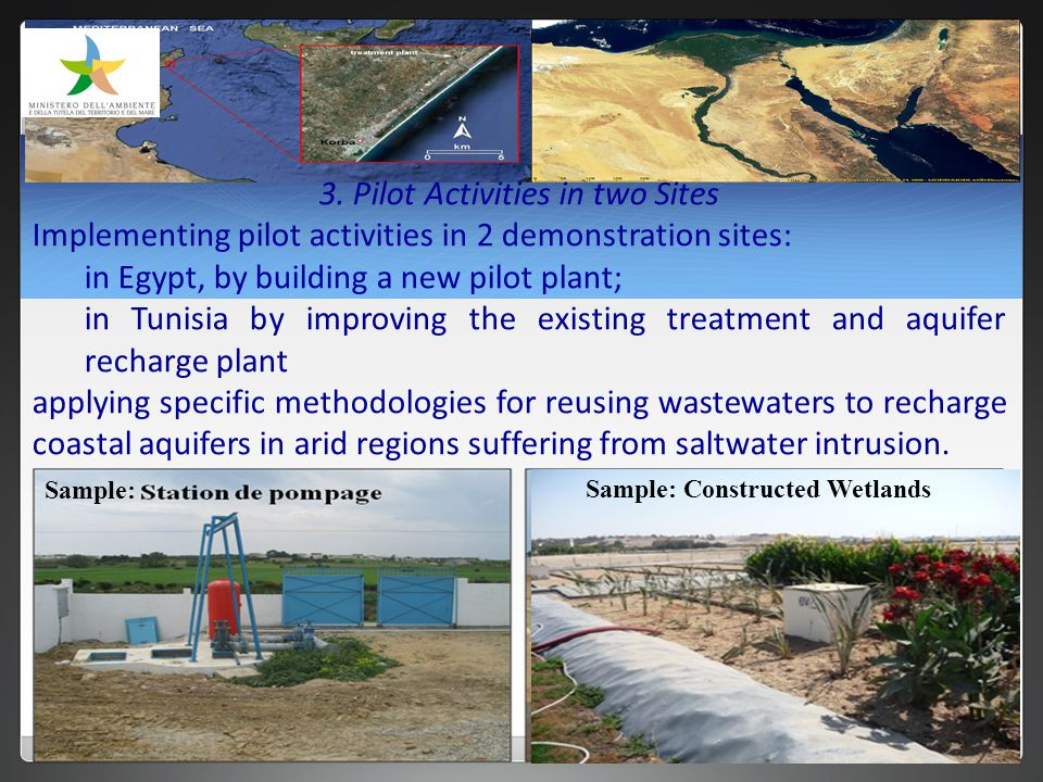 Sample: Constructed Wetlands Sample: 3.