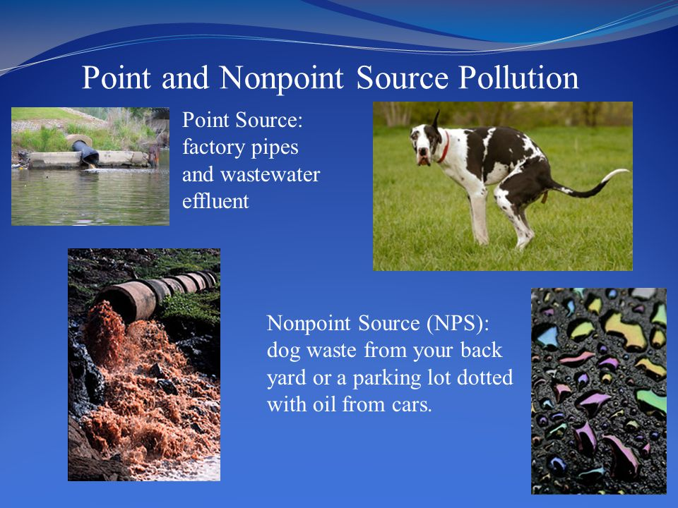 Point and Nonpoint Source Pollution Point Source: factory pipes and wastewater effluent Nonpoint Source (NPS): dog waste from your back yard or a park