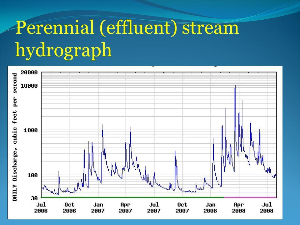 Perennial (effluent) stream hydrograph