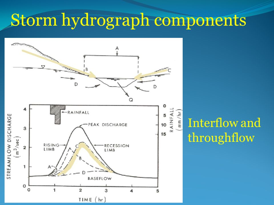 Storm hydrograph components Interflow and throughflow