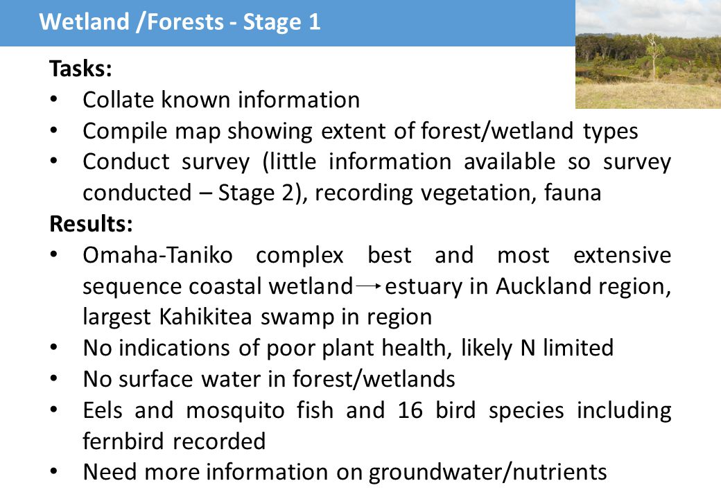 Auckland Council Review – key points Nutrient loads need to be reassessed (covered in Stage 1) Wetlands – important to assess effects, water sampling close to wetlands (covered in Stage 1 and 3) Hyrodynamics - need to assess flushing (Stage 1) Benthic habitat – updated survey required, nutrient effects (Stages 1-3) Midges, fish and birds - ok