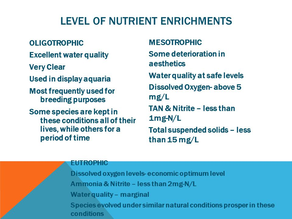 LEVEL OF NUTRIENT ENRICHMENTS OLIGOTROPHIC Excellent water quality Very Clear Used in display aquaria Most frequently used for breeding purposes Some species are kept in these conditions all of their lives, while others for a period of time MESOTROPHIC Some deterioration in aesthetics Water quality at safe levels Dissolved Oxygen- above 5 mg/L TAN & Nitrite – less than 1mg-N/L Total suspended solids – less than 15 mg/L EUTROPHIC Dissolved oxygen levels- economic optimum level Ammonia & Nitrite – less than 2mg-N/L Water quality – marginal Species evolved under similar natural conditions prosper in these conditions