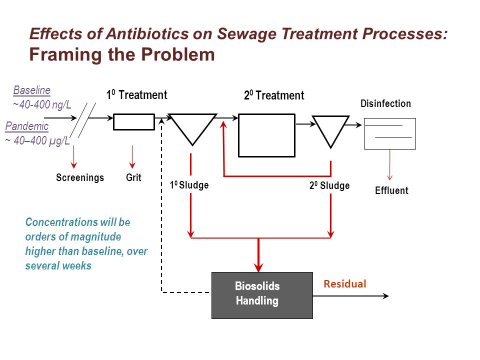 Effects of Antibiotics on Sewage Treatment Processes: Framing the Problem ScreeningsGrit 1 0 Sludge Biosolids Handling Residual 1 0 Treatment 2 0 Treatment Disinfection Effluent 2 0 Sludge Consider conflicting perspectives about antibiotic resistance Want biomass to be resistant to antibiotics so process functions Want effluents to be free of antibiotic resistant microorganisms to prevent introduction into environment