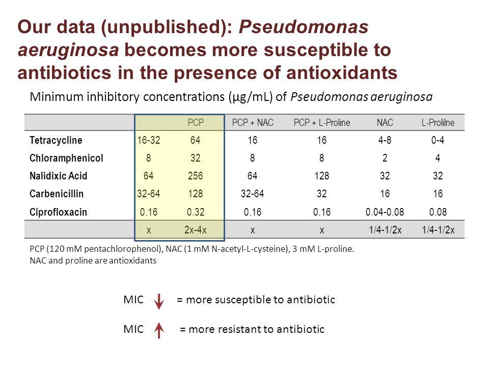 PCPPCP + NACPCP + L-ProlineNACL-Prolilne Tetracycline 16-326416 4-80-4 Chloramphenicol 8328824 Nalidixic Acid 642566412832 Carbenicillin 32-6412832-643216 Ciprofloxacin 0.160.320.16 0.04-0.080.08 x2x-4xxx1/4-1/2x Minimum inhibitory concentrations (µg/mL) of Pseudomonas aeruginosa PCP (120 mM pentachlorophenol), NAC (1 mM N-acetyl-L-cysteine), 3 mM L-proline.