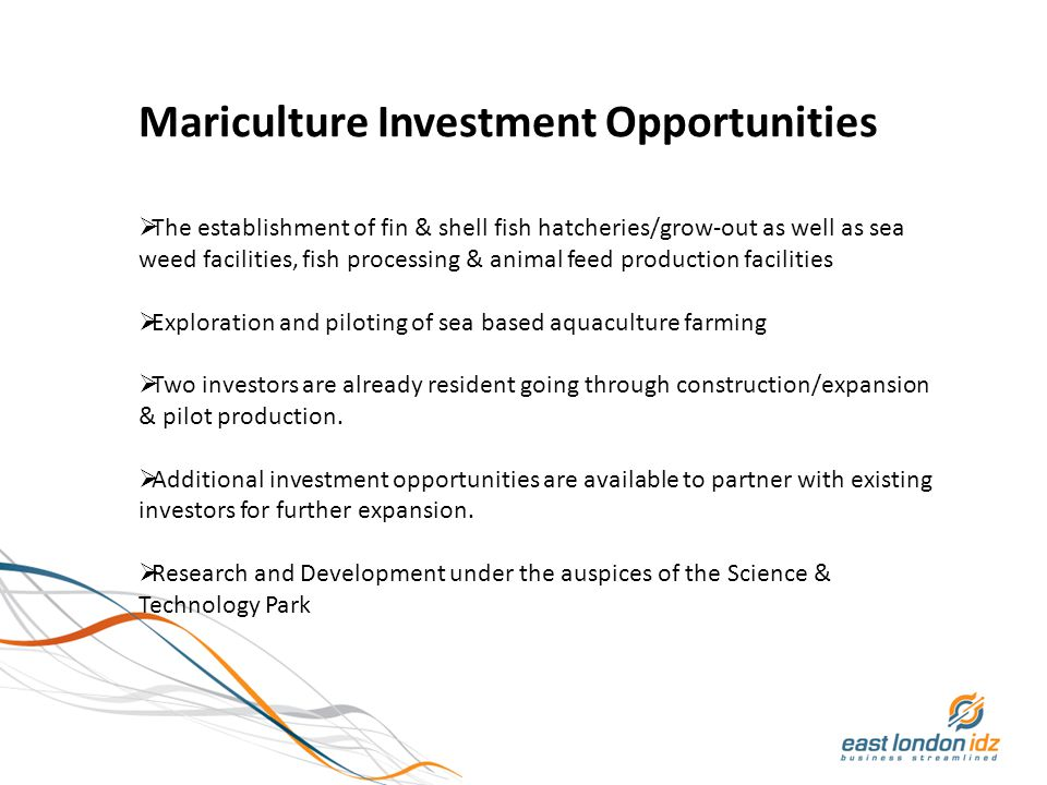 Mariculture Investment Opportunities  The establishment of fin & shell fish hatcheries/grow-out as well as sea weed facilities, fish processing & animal feed production facilities  Exploration and piloting of sea based aquaculture farming  Two investors are already resident going through construction/expansion & pilot production.