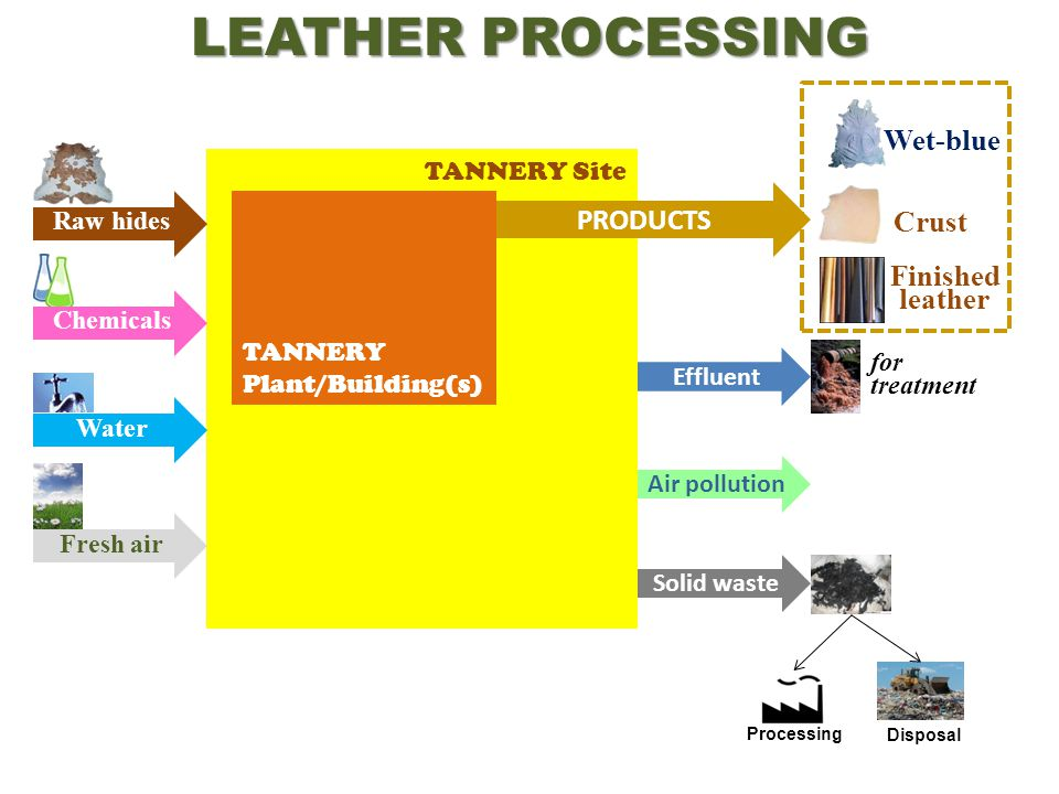 TANNERY Site LEATHER PROCESSING TANNERY Plant/Building(s) Finished leather CrustWet-blue Fresh air Water Chemicals Raw hides Solid waste Air pollution