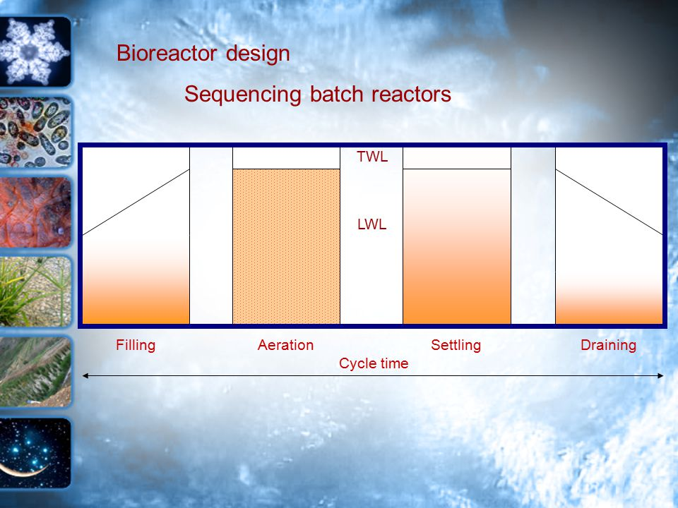 Bioreactor design Sequencing batch reactors FillingAerationSettlingDraining TWL Cycle time LWL