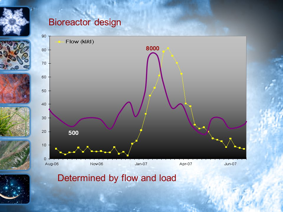Bioreactor design Determined by flow and load 8000 500