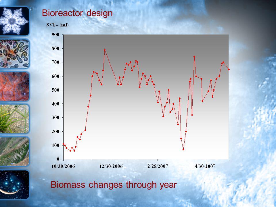Bioreactor design Biomass changes through year