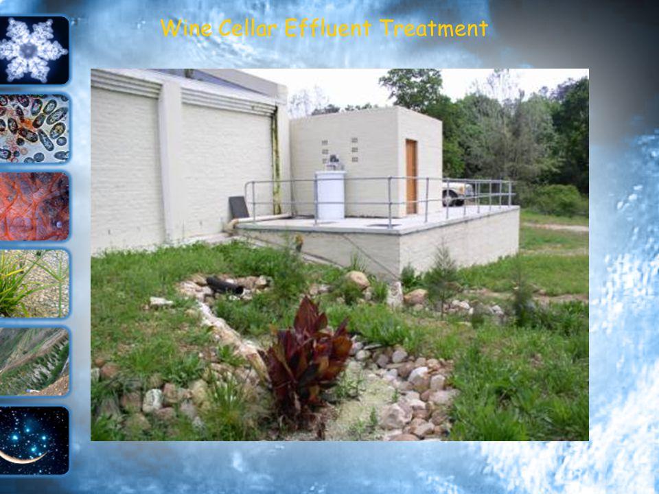 Wine Cellar Effluent Treatment 1000 Tons