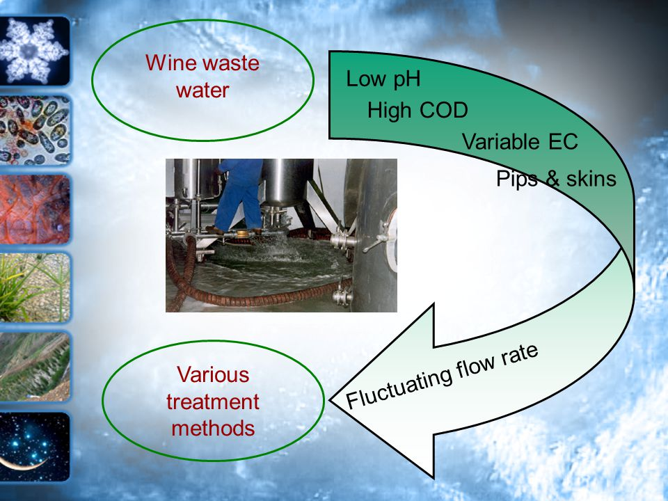 Various treatment methods Wine waste water Low pH High COD Variable EC Fluctuating flow rate Pips & skins