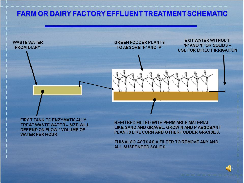 21 FARM EFFLUENT TREATMENT NITROGEN FROM DAIRY/DAIRY FACTORY WASTE COMES FROM THE PROTEIN.