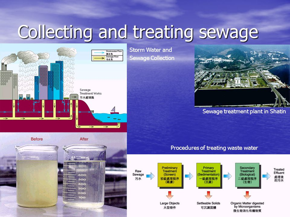 Collecting and treating sewage Sewage treatment plant in Shatin Procedures of treating waste water Storm Water and Sewage Collection