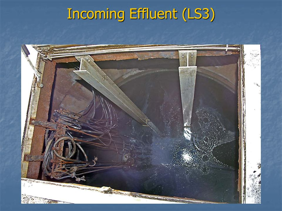 Incoming Effluent (LS3)
