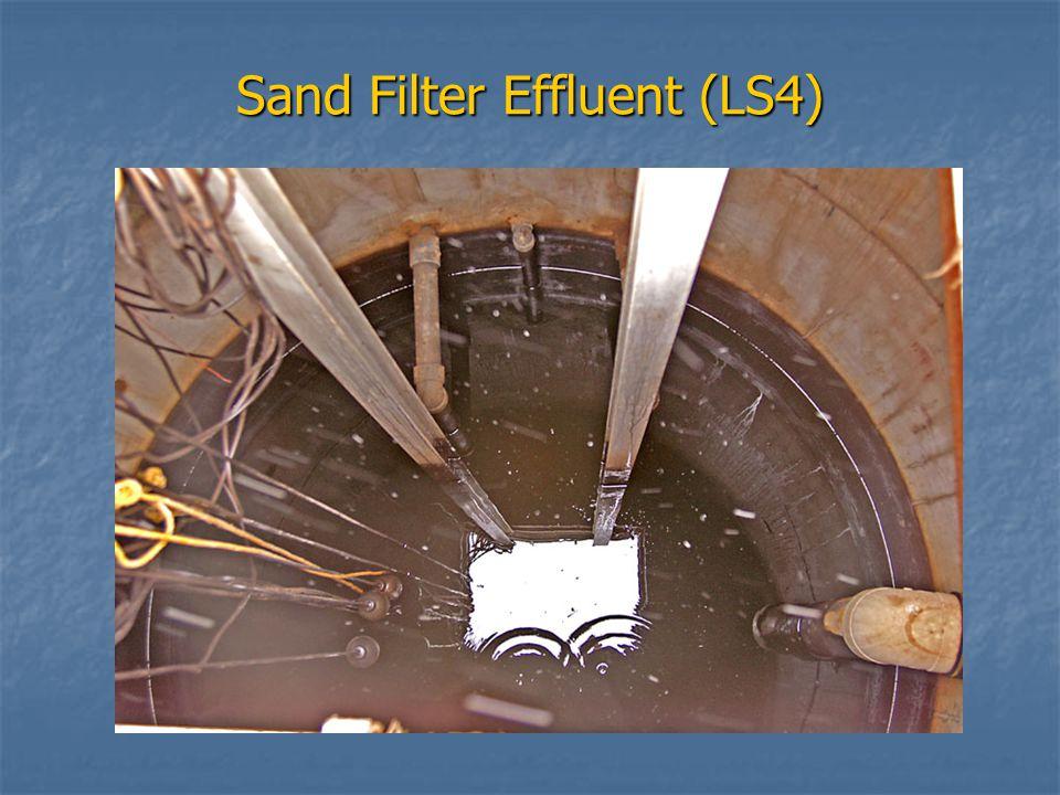 Sand Filter Effluent (LS4)