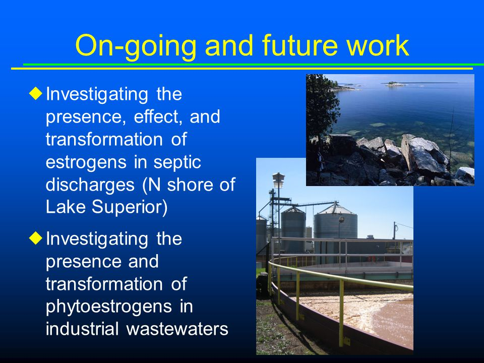 On-going and future work  Investigating the presence, effect, and transformation of estrogens in septic discharges (N shore of Lake Superior)  Investigating the presence and transformation of phytoestrogens in industrial wastewaters
