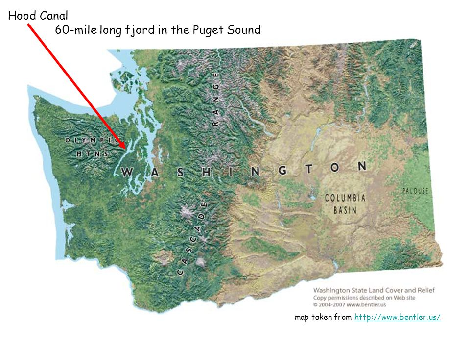 map taken from http://www.bentler.us/http://www.bentler.us/ Hood Canal 60-mile long fjord in the Puget Sound