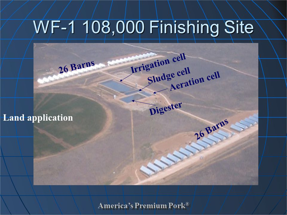 America's Premium Pork ® WF-1 108,000 Finishing Site 26 Barns Irrigation cell Sludge cell Aeration cell Digester Land application