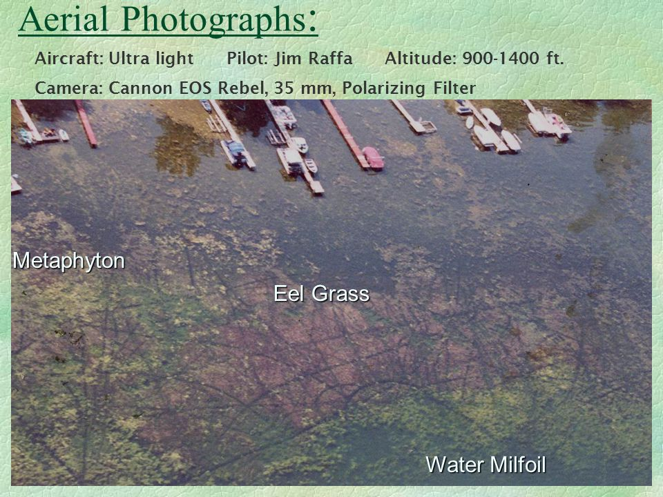 Aerial Photographs : Aircraft: Ultra light Pilot: Jim Raffa Altitude: 900-1400 ft.