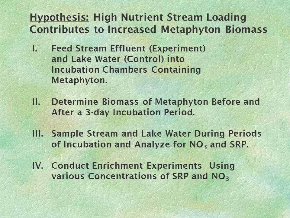 INCUBATION CHAMBER RESULTS: %Growth of Metaphyton Increased as pH Decreased All 14 Data Points Three Data Points Left Out 1) 1)Cottonwood Creek Stream 2) 2)Cottonwood Creek Lake 3) 3)Densmore Creek Lake Stream Stream Lake Lake