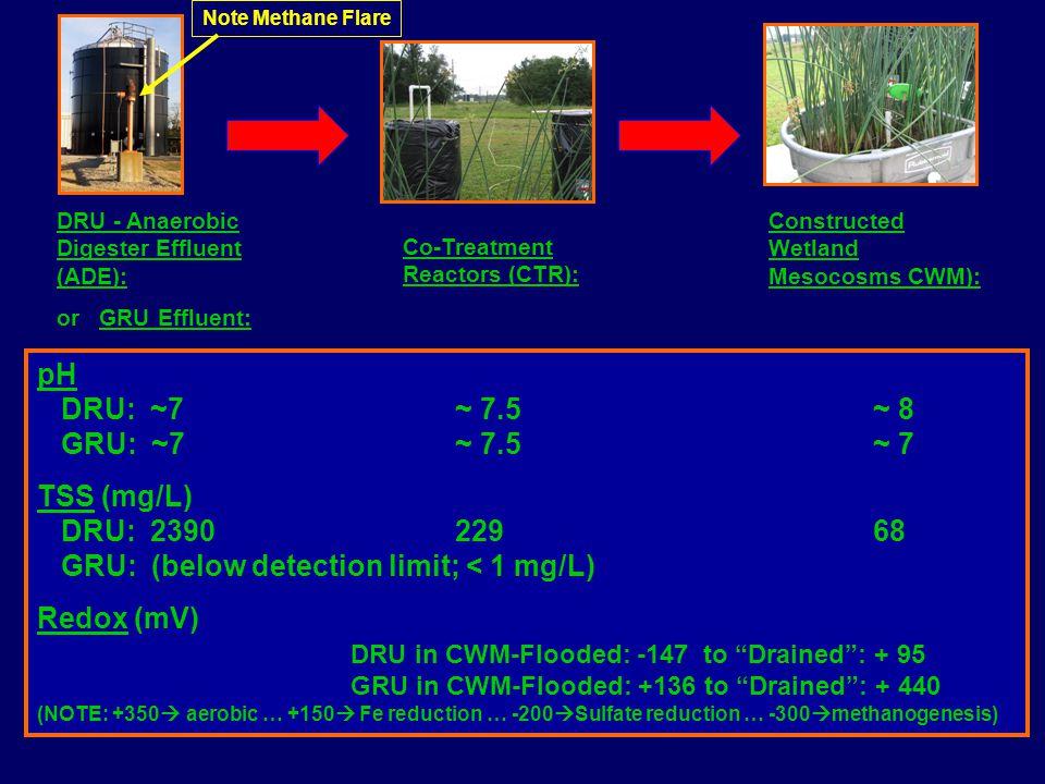 DRU - Anaerobic Digester Effluent (ADE): or GRU Effluent: Co-Treatment Reactors (CTR): Constructed Wetland Mesocosms CWM): pH DRU: ~7~ 7.5~ 8 GRU: ~7~ 7.5~ 7 TSS (mg/L) DRU: 239022968 GRU: (below detection limit; < 1 mg/L) Redox (mV) DRU in CWM-Flooded: -147 to Drained : + 95 GRU in CWM-Flooded: +136 to Drained : + 440 (NOTE: +350  aerobic … +150  Fe reduction … -200  Sulfate reduction … -300  methanogenesis) Note Methane Flare