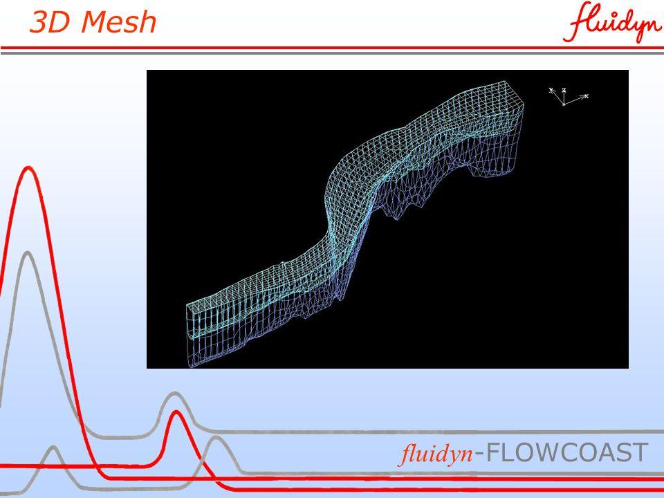 3D Mesh fluidyn -FLOWCOAST
