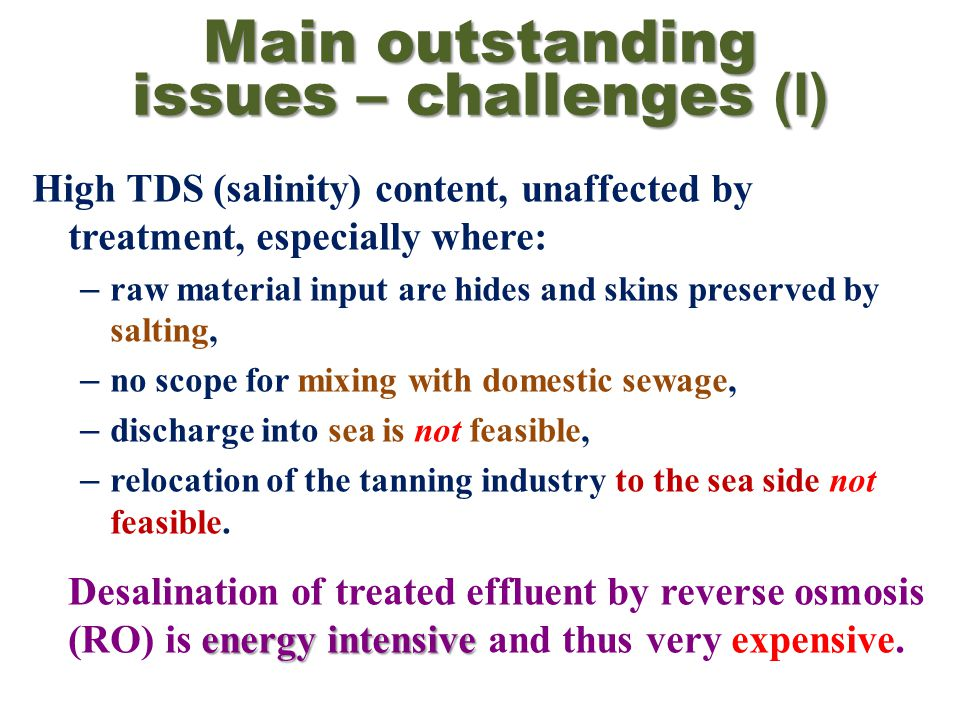 Main outstanding issues – challenges (I) High TDS (salinity) content, unaffected by treatment, especially where: – raw material input are hides and skins preserved by salting, – no scope for mixing with domestic sewage, – discharge into sea is not feasible, – relocation of the tanning industry to the sea side not feasible.