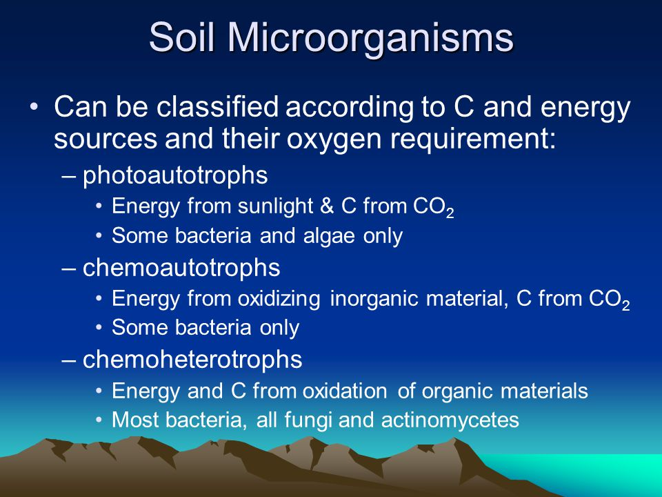 Soil Microorganisms Can be classified according to C and energy sources and their oxygen requirement: –photoautotrophs Energy from sunlight & C from CO 2 Some bacteria and algae only –chemoautotrophs Energy from oxidizing inorganic material, C from CO 2 Some bacteria only –chemoheterotrophs Energy and C from oxidation of organic materials Most bacteria, all fungi and actinomycetes