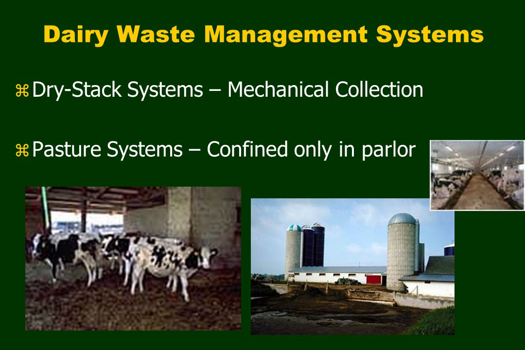 Dairy Waste Management Systems z Dry-Stack Systems – Mechanical Collection z Pasture Systems – Confined only in parlor