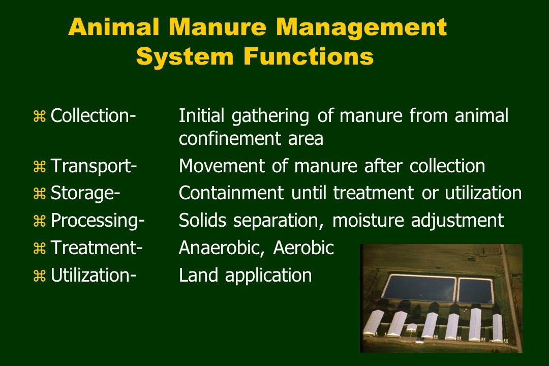 Manure Handling Options SOLID Moisture < 70% to handle mechanically LIQUID Moisture > 90% to handle hydraulically
