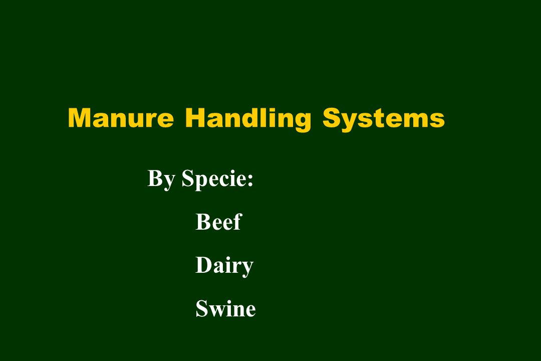Manure Handling Systems By Specie: Beef Dairy Swine